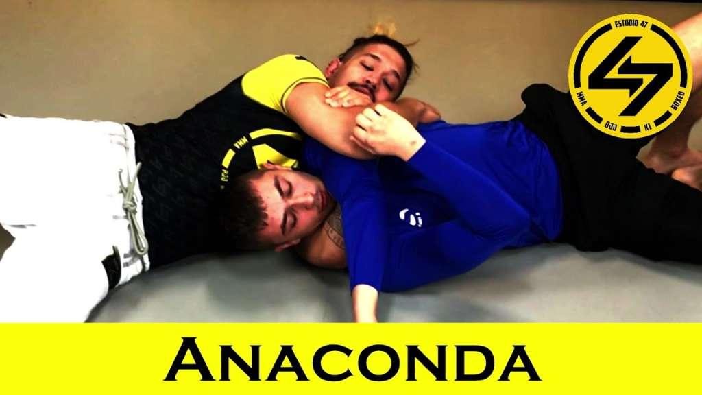 BJJ Anaconda