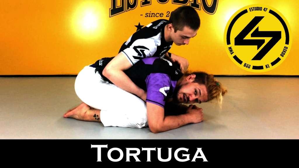 BJJ Tortuga