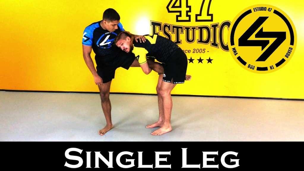 bjj single leg